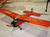 Vintage Plane<br>Second<br>BOB NOLL<br>LIVE WIRE KITTEN<br>ENDICOTT,NY USA