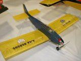 Vintage Plane<br>First<br>PIEDNOIR JEAN-MARIE<br>BOMBETTE<br>GALENA,OH USA